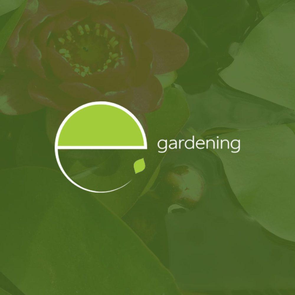 teroro agency e gardening progetto copertina 1000x1000 - Portfolio